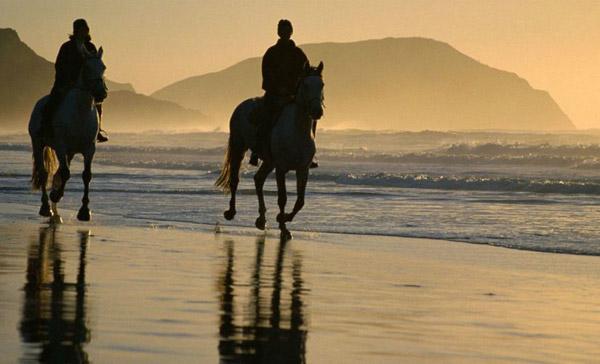 Equestrian Addiction Practice